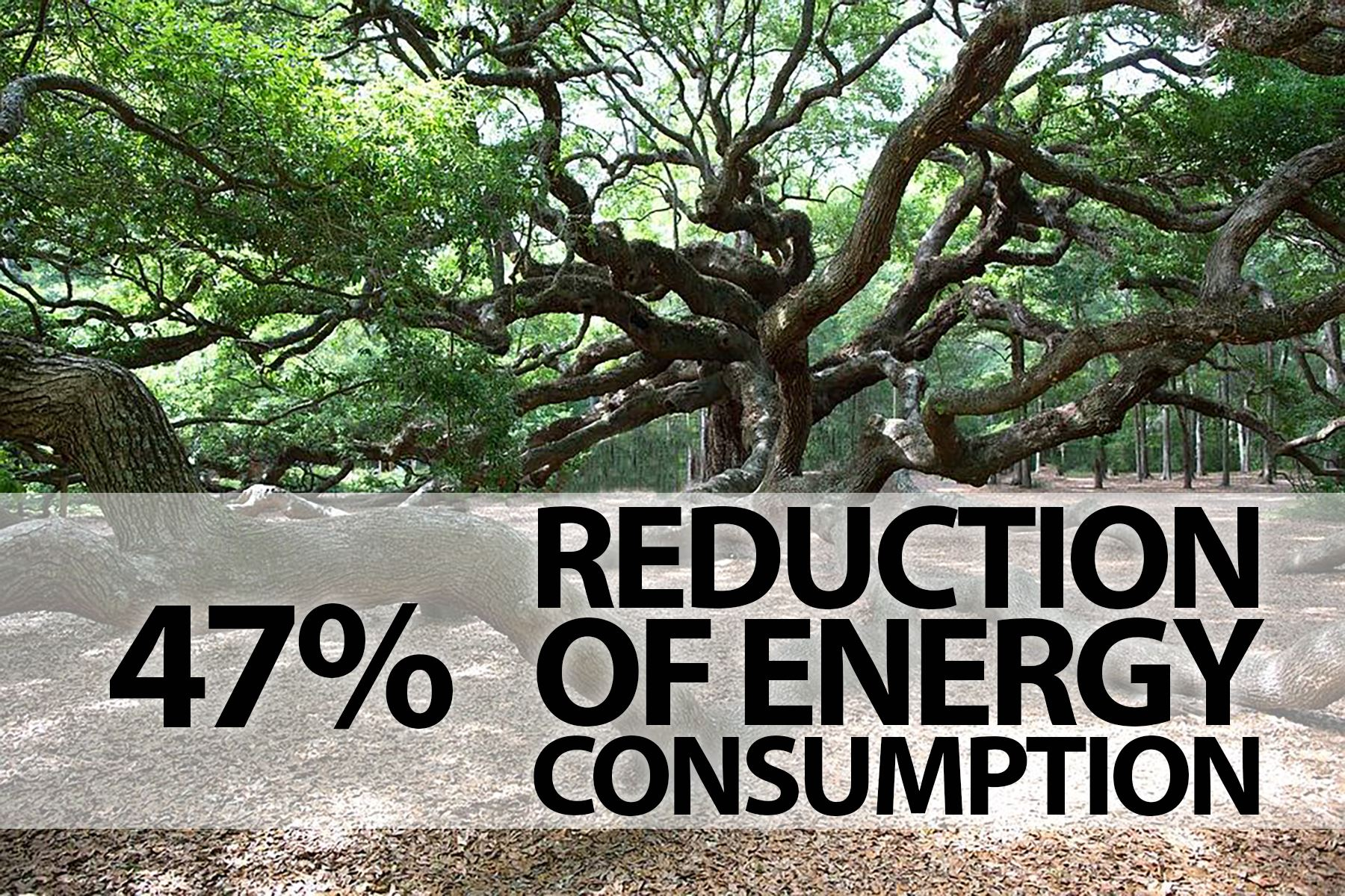 Angel Oak with energy reduction from JCI