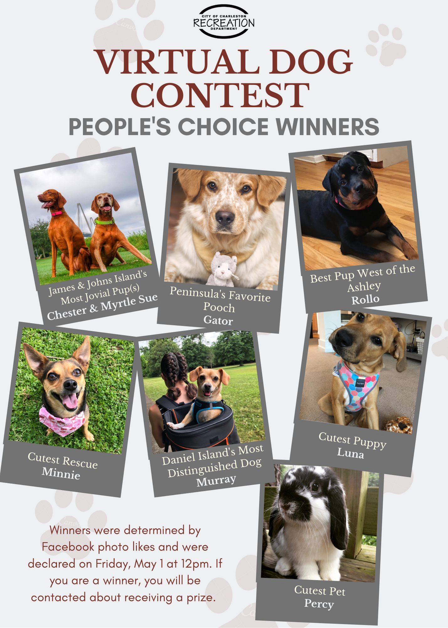 Virtual Dog Contest - Peoples Choice Winners