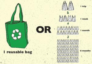 reusable bag vs plastic